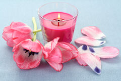Spring aroma Stock Images