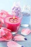 Spring aroma Royalty Free Stock Photos