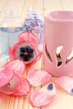 Spring aroma Royalty Free Stock Photography