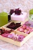 Spring aromatherapy Royalty Free Stock Photos