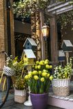 Spring arrangement of flowers, birdhouses and bicycle stock photos