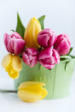 Spring arrangement of pink and yellow tulips Stock Images
