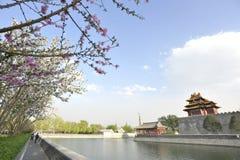 Spring arround the Forbidden City Stock Photos