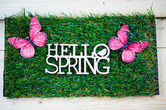 Spring as text written on a meadow with butterfly, symbolic for Stock Image