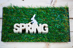 Spring as text written on a meadow with butterfly, symbolic for Royalty Free Stock Images