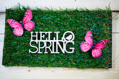 Spring as text written on a meadow with butterfly, symbolic for Stock Photo
