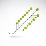 Spring ash leaf, botany and eco flat image. Vector illustration Stock Images