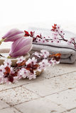 Spring atmosphere for body cleansing at home spa Stock Images