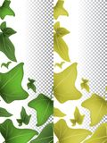 Spring and autumn flyers template design with green and yellow leaves. Vector illustration. Eps 10 Vector Illustration