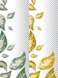 Spring and autumn flyers template design with green and yellow leaves. Vector illustration. Eps 10 Stock Photography