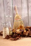 When the spring or autumn season comes, it`s time to organize the garden. During cleaning works, various garden tools are useful which shorten the working time Stock Images