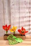 When the spring or autumn season comes, it`s time to organize the garden. royalty free stock photos