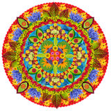 Spring autumn and summer in  rotation Royalty Free Stock Image
