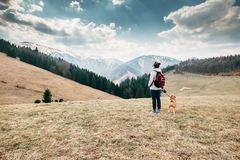 Spring, autumn turistic time - woman with beagle dog on mountain Royalty Free Stock Photography