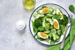 Spring avocado salad with green vegetables and boiled egg.Top vi. Spring avocado salad with green vegetables and boiled egg on a vintage plate over light slate Stock Photography