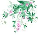 Spring awakening Stock Images
