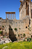 Spring in Baalbeck (Heliopolis) Lebanon Royalty Free Stock Photography