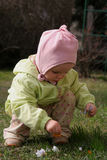 Spring baby. Little baby picking crocuses Stock Photos