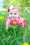 Spring baby Stock Image