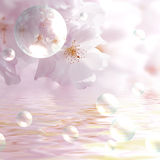 Spring Background. An illustrated background of a spring day, with blossoming tree flowers, water & soap bubbles Royalty Free Stock Photo