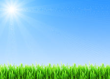 Spring background royalty free stock images