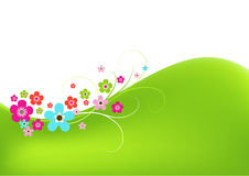 Spring background. With colorful flowers Stock Images