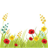 Spring background. With flowers illustration Royalty Free Stock Image
