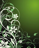 Spring background. Spring floral background Stock Photography