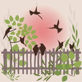Spring background. Spring natural background - flying birds Royalty Free Stock Photography