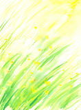 Spring background Royalty Free Stock Photography