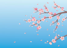 Spring background. Stock Photo