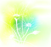 Spring Background. Spring flowers on watercolor background. Vector illustration Royalty Free Stock Images