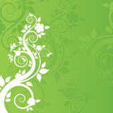 Spring background. Spring green beautiful floral background Stock Illustration