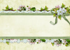 Spring background with apple flowers and lace Royalty Free Stock Images