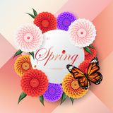 Spring background among beautiful colorful dahlia flower,  Royalty Free Stock Images