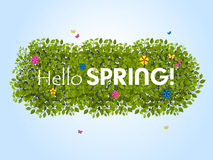 Spring background_4 Royalty Free Stock Photo