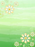 Spring beige flowers in green background Stock Images