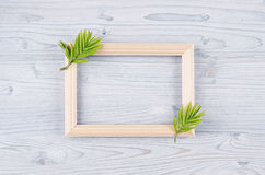 Spring background of blank wood frame and young green leaves on light blue wooden board. Royalty Free Stock Images