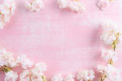 Spring background. Spring blooming branches on pink wooden background. Apple blossoms stock photo
