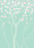 Spring Background2. Spring background with blooming tree Royalty Free Stock Images