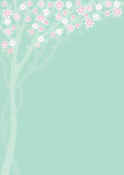 Spring Background1. Spring background with blooming tree Stock Image