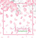 Spring background with blossoming Apple flowers. Vector template royalty free illustration