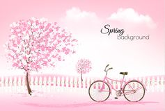 Spring background with a blossoming tree and a bike. Stock Photos