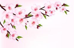 Spring background of a blossoming tree branch with. Spring flowers. Vector Stock Images