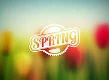 Spring Background royalty free illustration