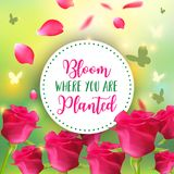 Spring background. Bokeh vector design. Bloom where you are planted. Abstract Greeting Card or Poster Design with. Spring background. Bokeh vector design. Bloom Stock Illustration