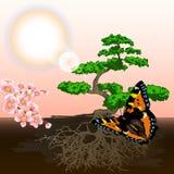 Spring background bonsai and cherry Stock Photos
