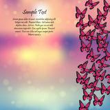 Spring background with butterflies. Very high quality original trendy vector illustration of a spring background with butterflies. Frame for decoration Stock Image