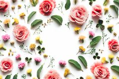 Spring Background With Colorful Flowers stock image
