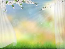 Spring background with curtain Royalty Free Stock Photography